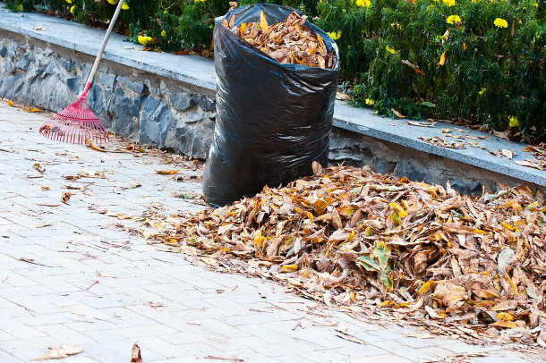 Yard Waste Removal Stockton